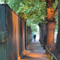 Вечерние краски поселка Сокол :: Natalia Almosti