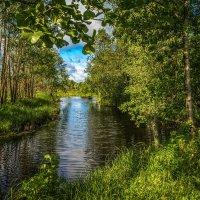 Озерцо :: Андрей Дворников