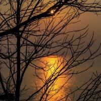 Призрачное солнце :: Дмитрий Проскурин