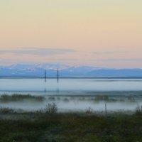 Ночной туман. :: Николай Емелин