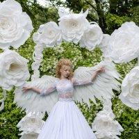 ангел :: Оксана Холод