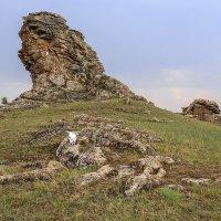 В Тажеранской степи :: Алексей Поляков
