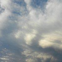 Небесные перья :: Ольга