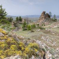 Лето в Тажеранской степи :: Алексей Поляков