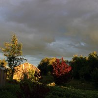Пасмурно - летнее небо в деревне... :: Ангелина Божинова