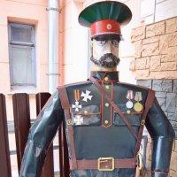 Генерал с планеты Шелезяка... :: Vladimir Semenchukov