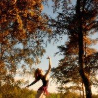 балет на природе :: Александр Шахмин