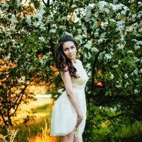 Жаркое лето :: Алина Репко