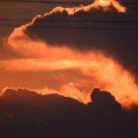 Огнедышащий дракон :: Светлана Ларионова