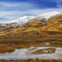 Где-то на Южно-Чуйском перевале :: Альберт Беляев