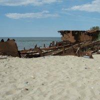 На берегу Балтики #4 :: Александр Степовой