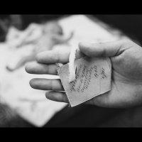 Рождение новой жизни :: Анастасия Файдель
