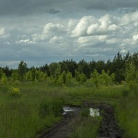После дождя :: Яков Реймер