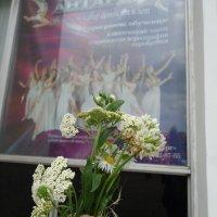 Цветы танцуют ввысь... :: Алекс Аро Аро