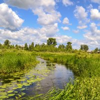 река Азанка :: сергей
