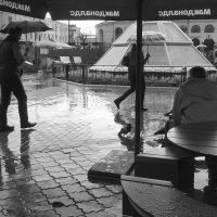 Задождило! :: Владимир Шошин