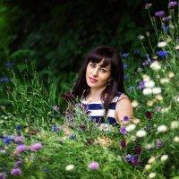 Полевые цветы,красотища) :: Ольга Малинина