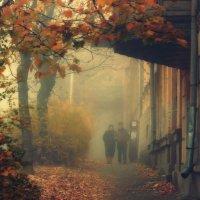 Прогулки по осени :: Леонид Сергиенко