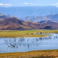 Озеро Изабелла. :: Slava Sh