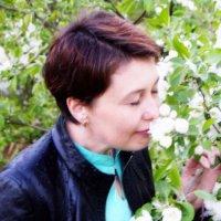 Яблоня в цвету. :: Olesya Aleksandrova