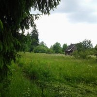 Перед дождичком,в четверг!:) :: Жанна Викторовна