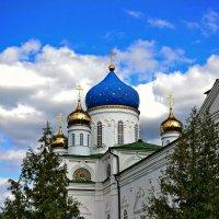 Церковь Иоакима и Анны :: Ирина Falcone