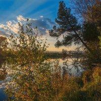 Осенние краски :: vladimir