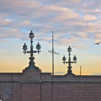 фонари Троицкого моста :: Елена
