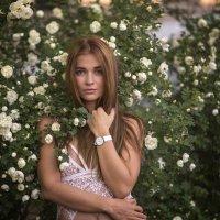 В розах :: Женя Рыжов