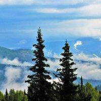 Клочья белого тумана :: Сергей Чиняев