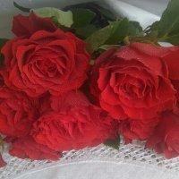 Красные розы :: Mariya laimite