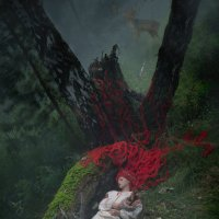 enchanted forest :: Антон Sense