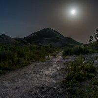 В лунном свете :: ALEXANDR L