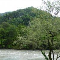 Абхазия :: Наиля