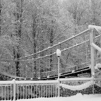 Зимний мостик :: Елена Даньшина