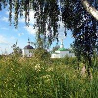 Июньское утро в Усть-Выми :: Николай Туркин