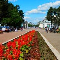 В городском парке :: Владимир Звягин