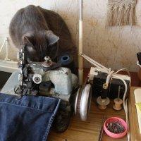 Я  еще и  вышивать  могу......... и  шить....  но  лень.. :: Валерия  Полещикова