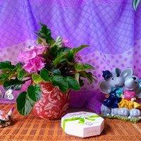 """Мышонок: """"Весь сыр Земли брошу я к твоим лапкам, дорогая! :) :: Nina Yudicheva"""