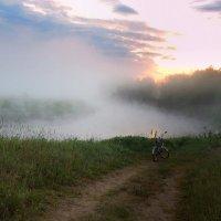 Летнее утро :: Павлова Татьяна Павлова