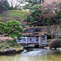 Японский уголок в ботаническом саду :: Galina Kazakova