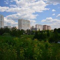 Твоя улица :: Борис Устюжанин
