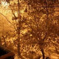 зима :: Евгений Артюшин