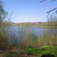 Борисо-Глебское озеро,Раменское :: Лис-сан