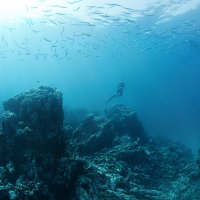 Райские острова :: Andrey Narchuk