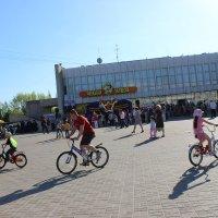 Велосипедисты :: Алина Троицкая