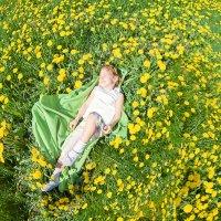 Одуванчиковый мир :: Маргарита Ивлева