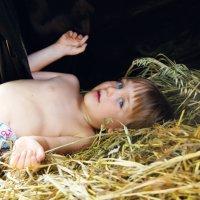 Мальчик на сене. :: Татьяна Гордеева