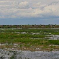 Кронштадтский форт :: Ирэна Мазакина