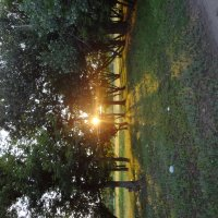 Солнце :: Катерина Некрасова